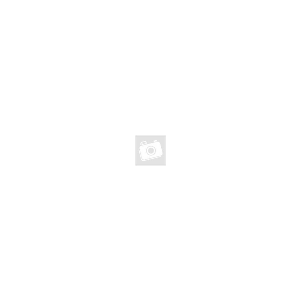 Csepel Landrider trekking kerékpár (agyváltós) - kék